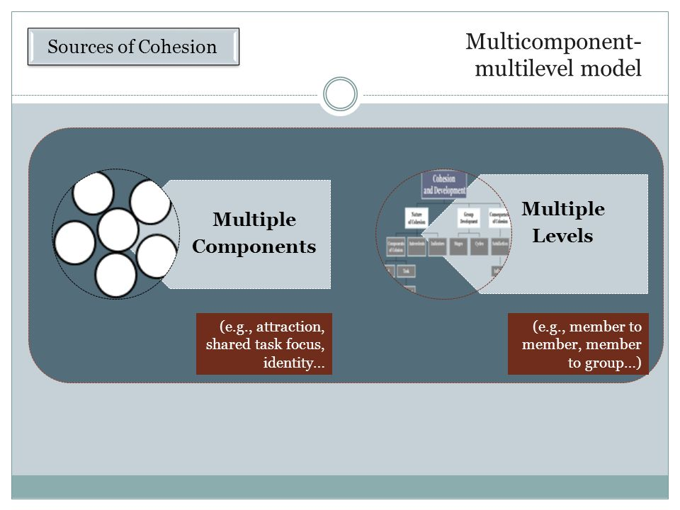 Multicomponent-multilevel model