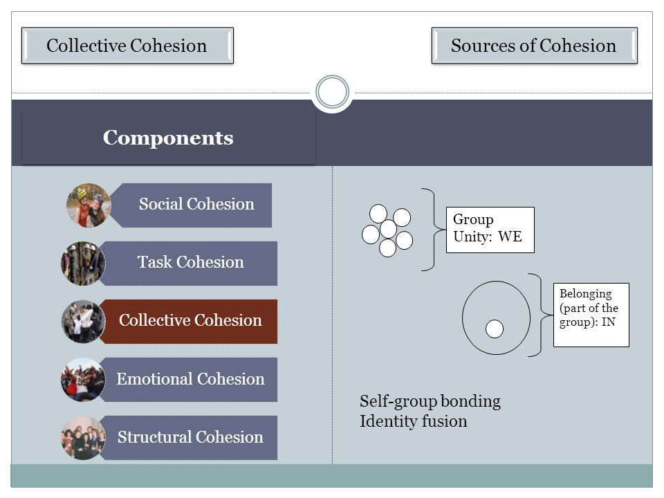 Components Collective Cohesion Sources of Cohesion Social Cohesion