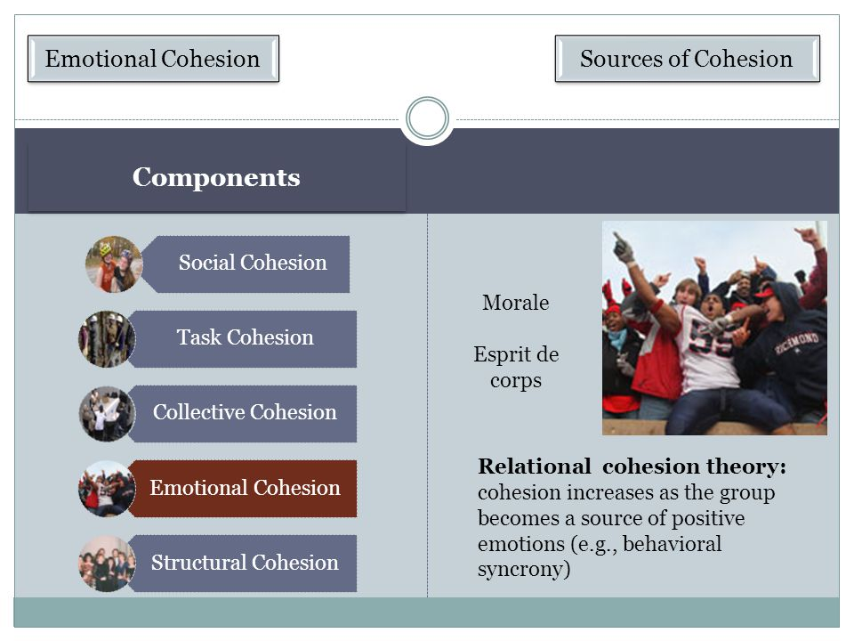 Components Emotional Cohesion Sources of Cohesion Social Cohesion