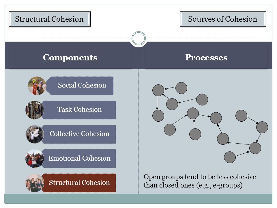 Components Processes Structural Cohesion Sources of Cohesion