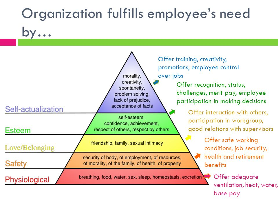 Organization fulfills employee's need by…