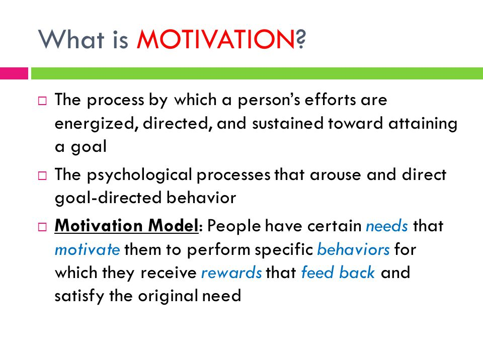 What is MOTIVATION The process by which a person's efforts are energized, directed, and sustained toward attaining a goal.