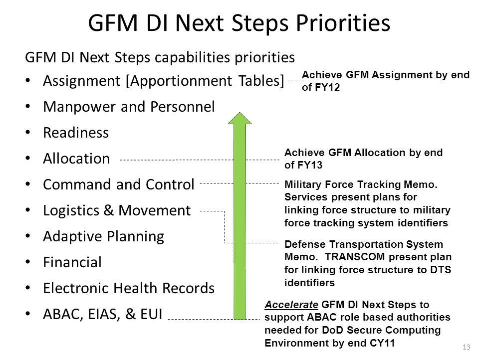 GFM DI Next Steps Priorities