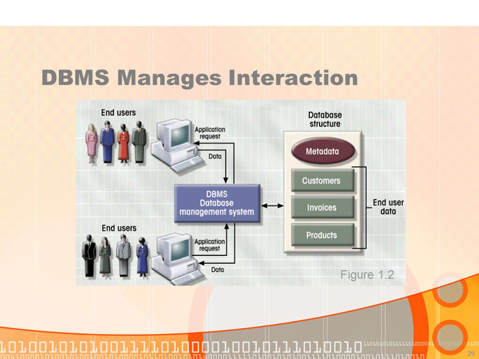 DBMS Manages Interaction