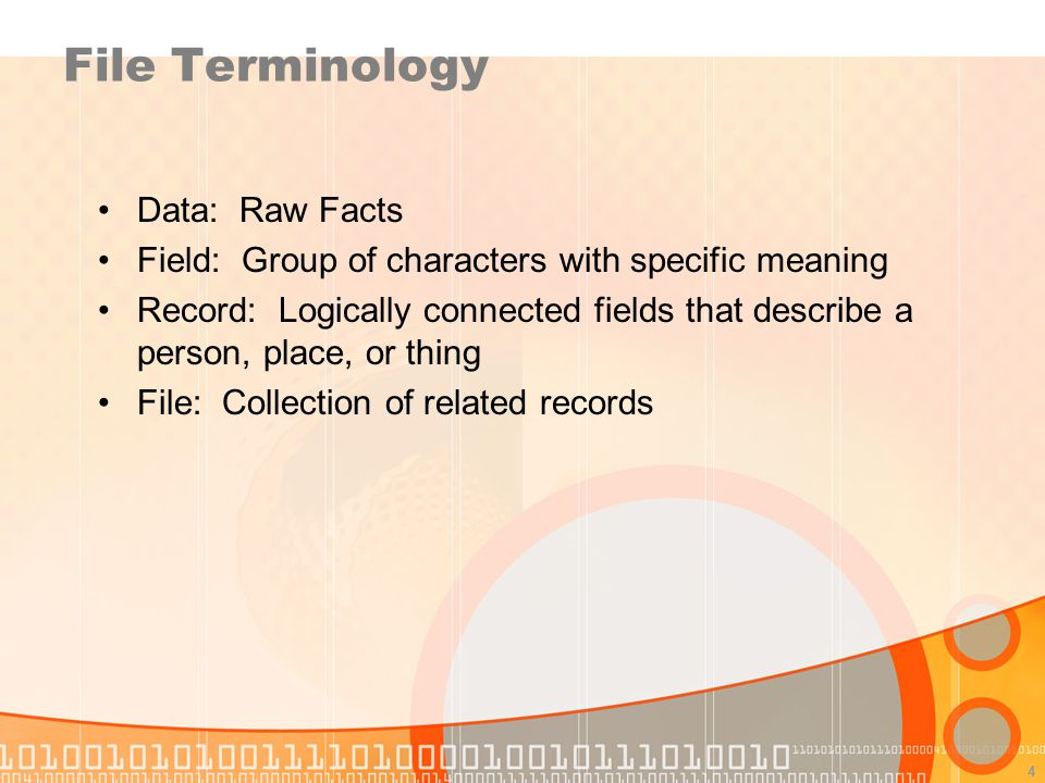 File Terminology Data: Raw Facts