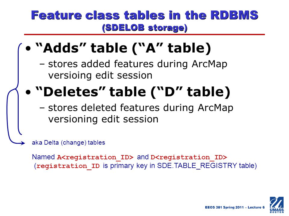 Feature class tables in the RDBMS (SDELOB storage)