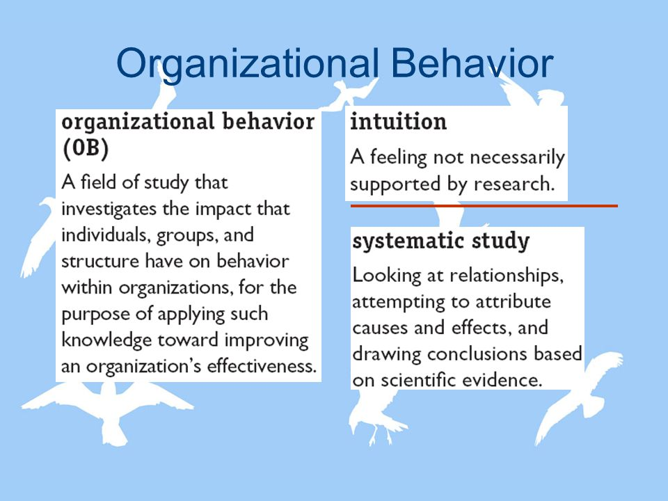 organizational behavior definition Motivation theories: behavior  a good appraisal will lead to organizational rewards the organizational rewards will satisfy his or her personal goals.