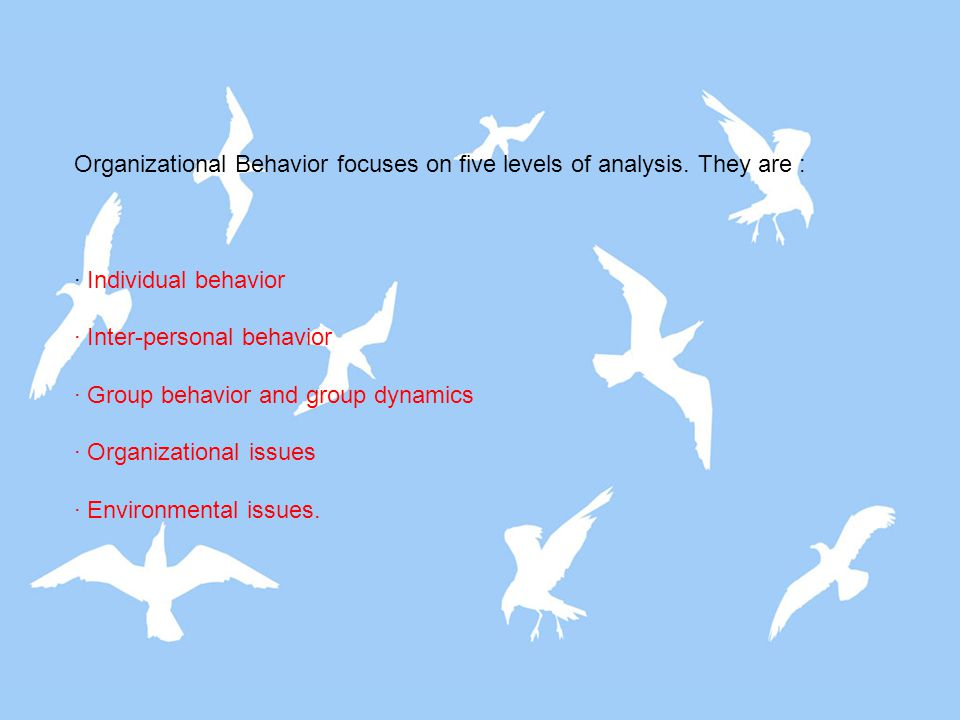 Organizational Behavior focuses on five levels of analysis. They are :