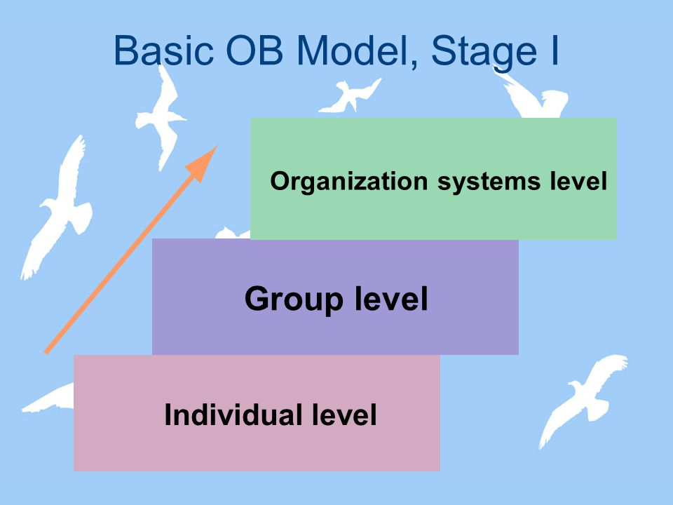 ob model stage 2 There will be four stages of nonstop music throughout the day at the annual ob  street fair  chili cook-off winners announcement - main stage (2:30 - 3:00.