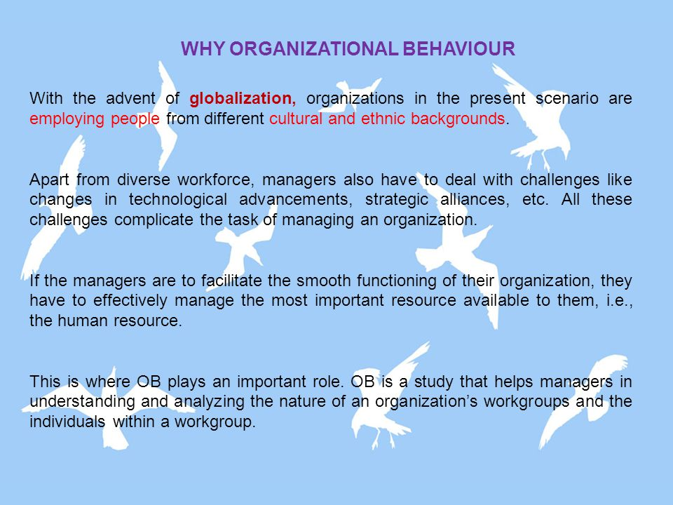 an analysis of the roles and importance of organizational memory Human resource management practices and firm performance: the moderating roles of strategies and environmental uncertainties by normala binti daud.