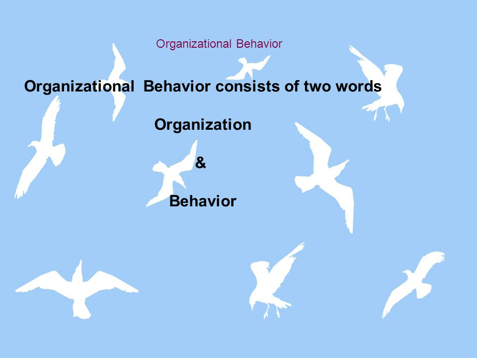Organizational Behavior consists of two words