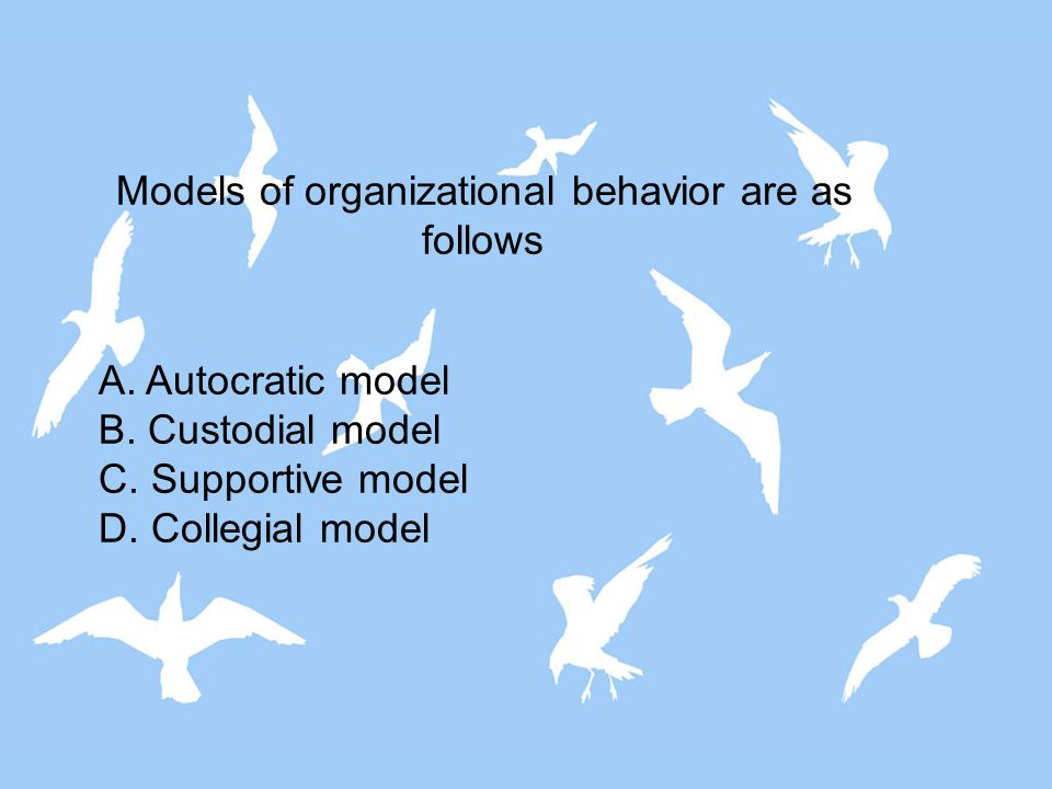Models of organizational behavior are as follows