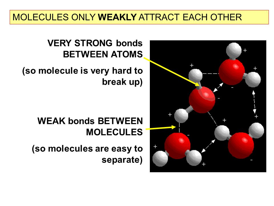MOLECULES ONLY WEAKLY ATTRACT EACH OTHER