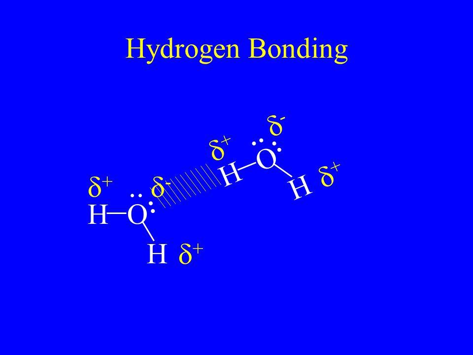 Hydrogen Bonding H O d+ d- H O d+ d-