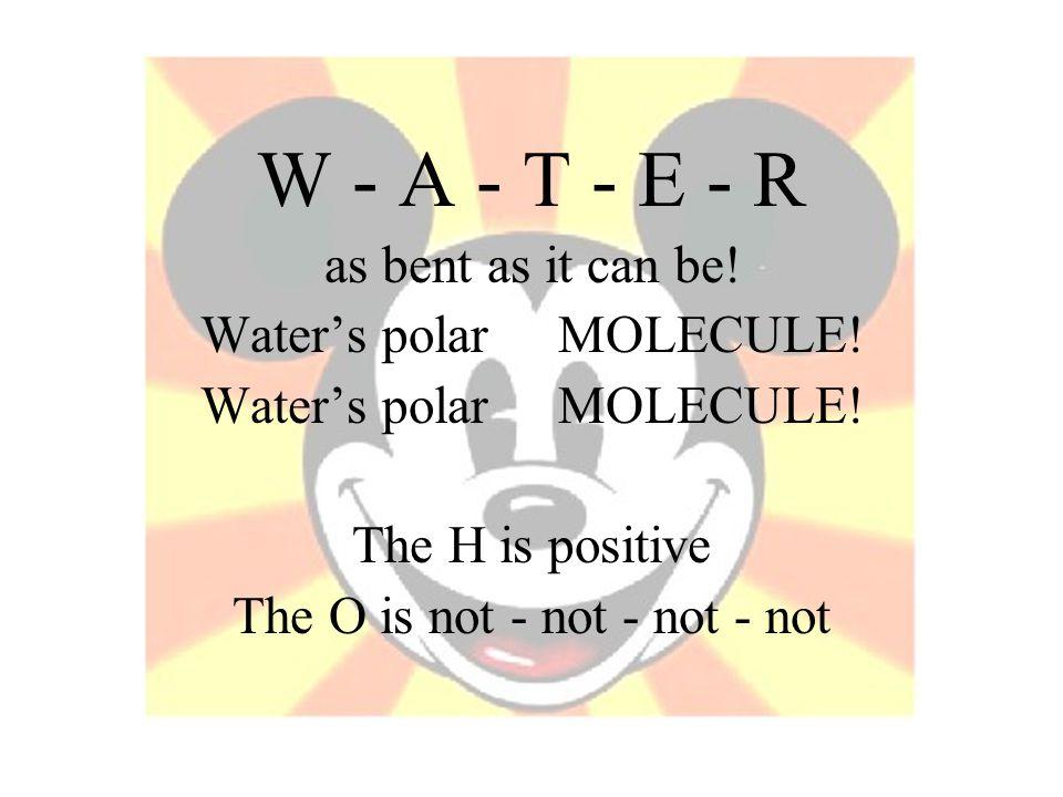 W - A - T - E - R as bent as it can be! Water's polar MOLECULE!