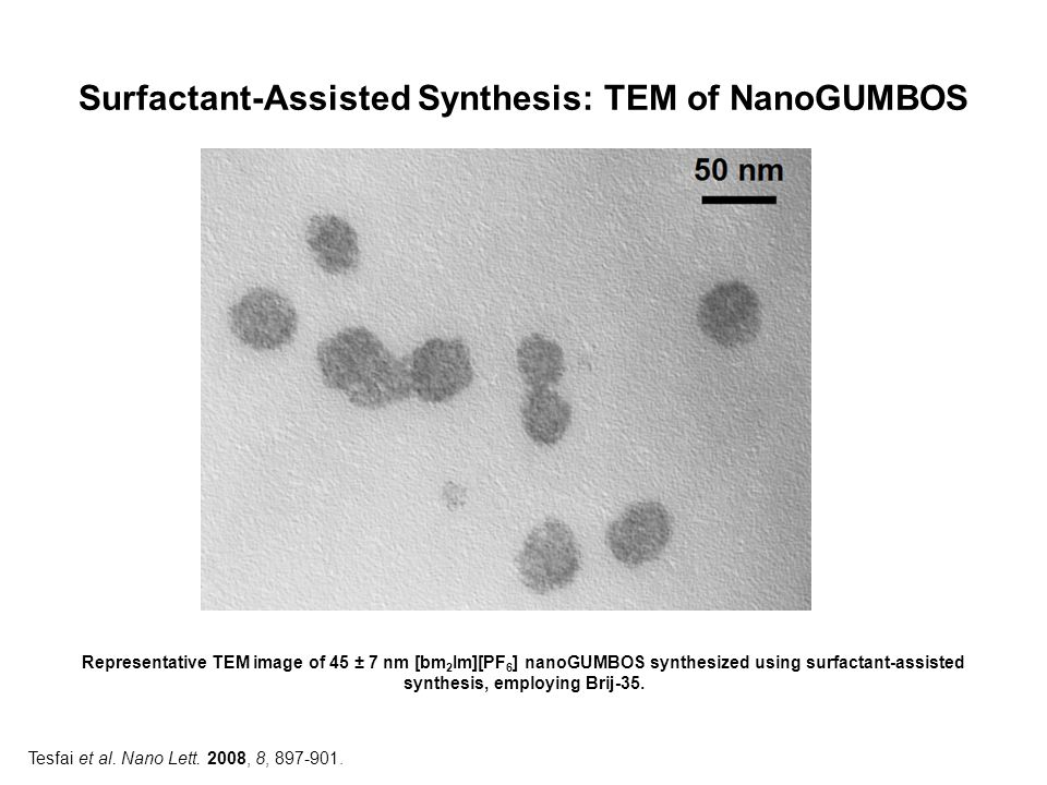 Surfactant-Assisted Synthesis: TEM of NanoGUMBOS