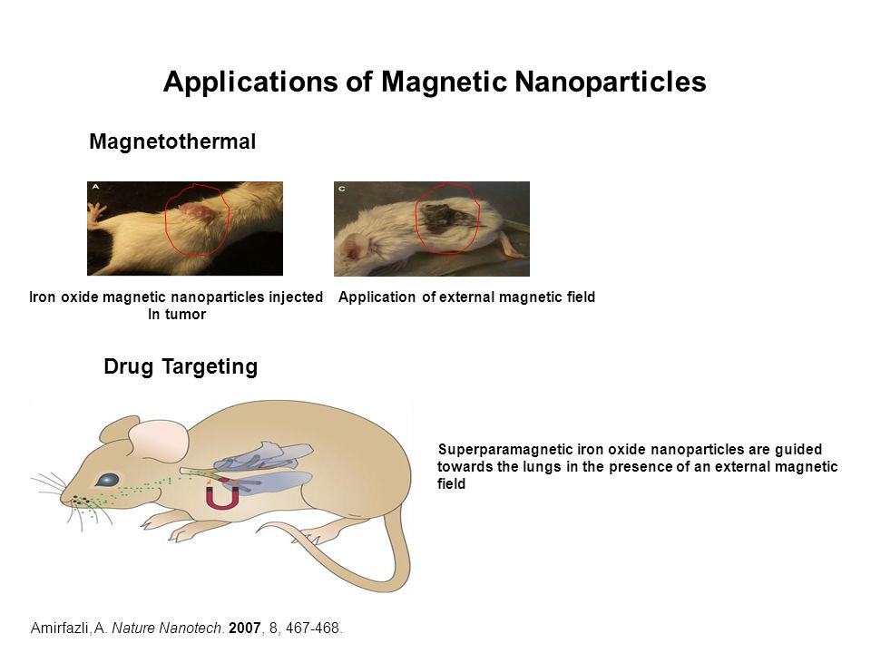 Applications of Magnetic Nanoparticles