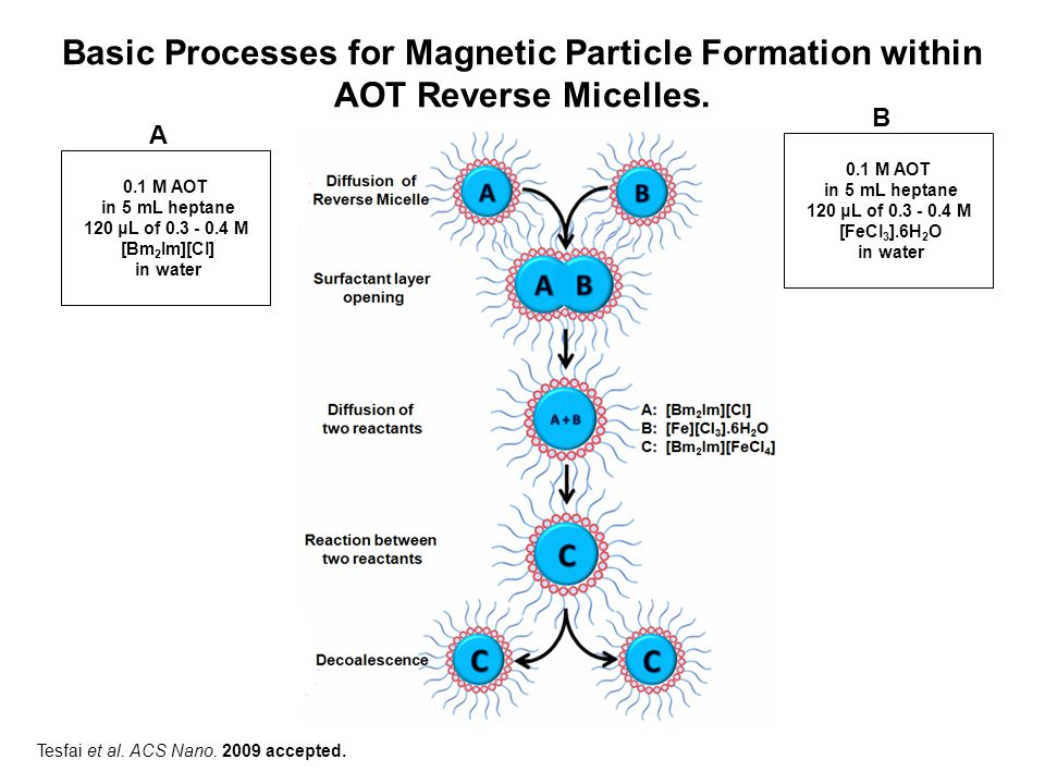 Basic Processes for Magnetic Particle Formation within AOT Reverse Micelles.