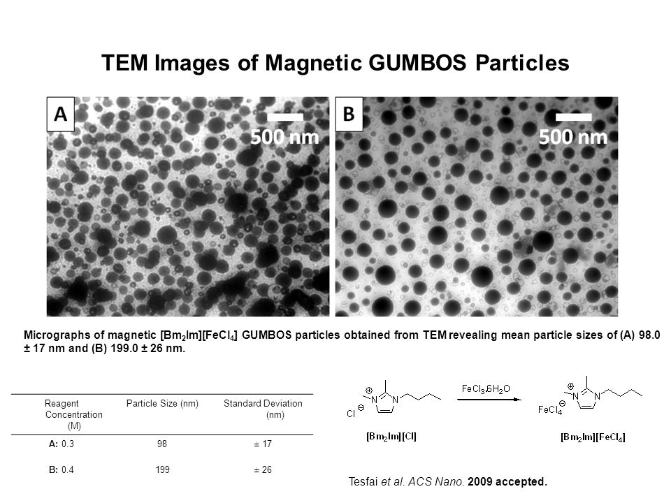 TEM Images of Magnetic GUMBOS Particles