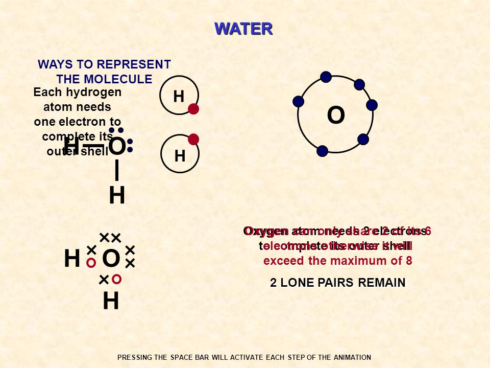 O H O H O H WATER H H WAYS TO REPRESENT THE MOLECULE