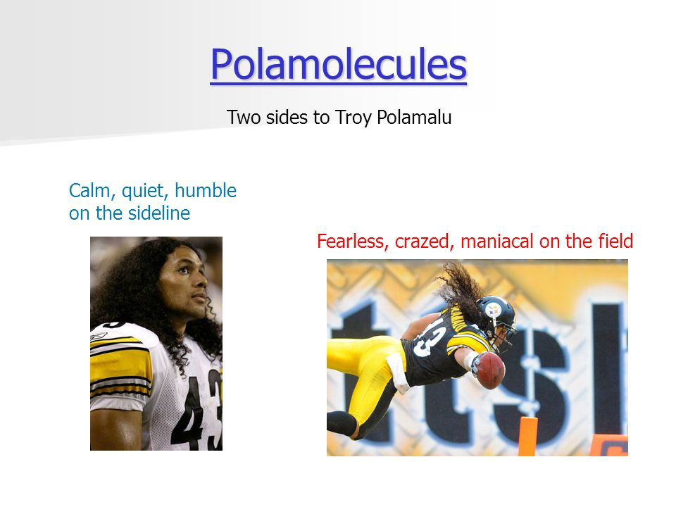 Polamolecules Two sides to Troy Polamalu