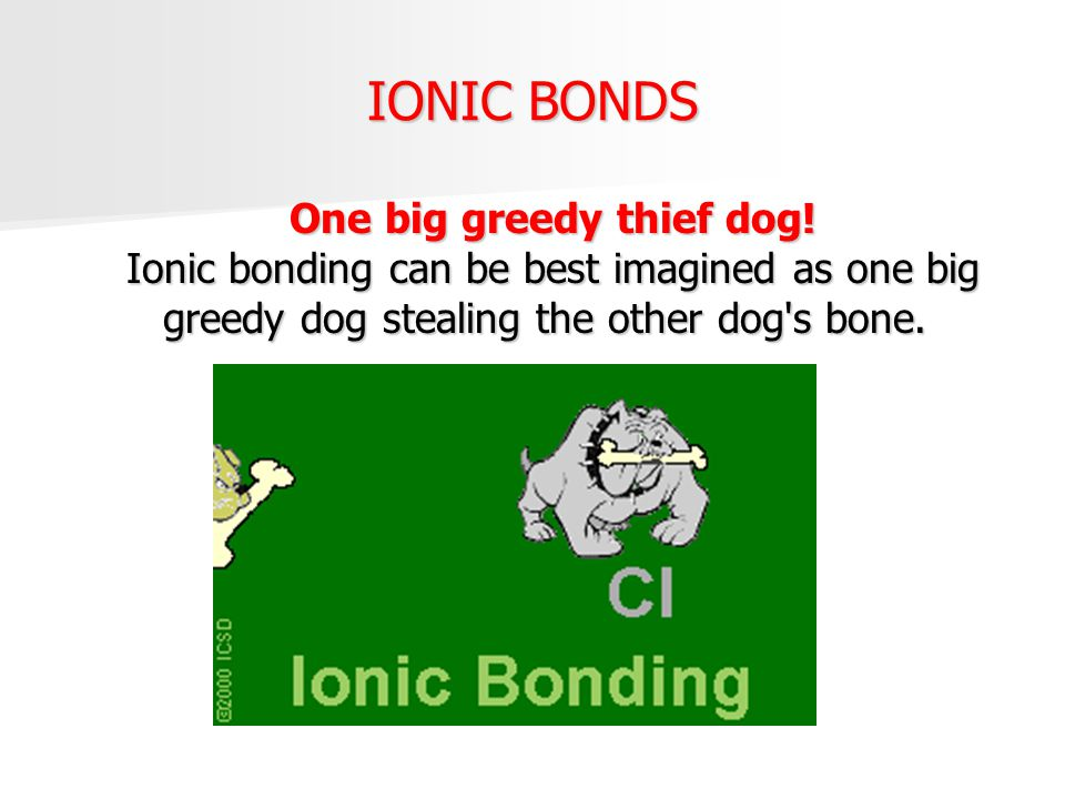 IONIC BONDS One big greedy thief dog.
