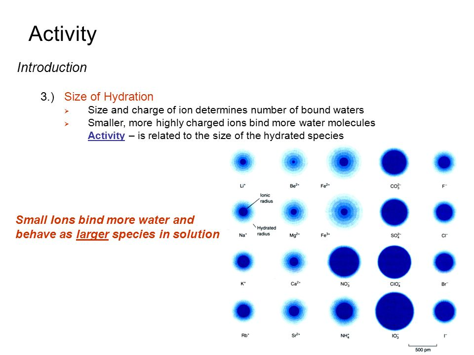Activity Introduction 3.) Size of Hydration