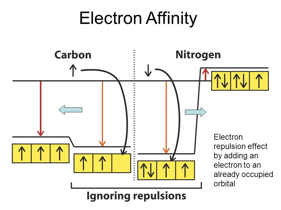 Electron Affinity Electron repulsion effect by adding an electron to an already occupied orbital