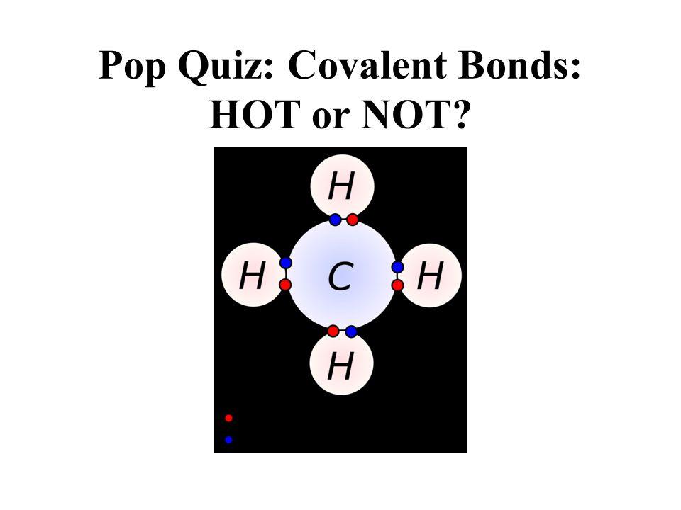 Pop Quiz: Covalent Bonds: HOT or NOT