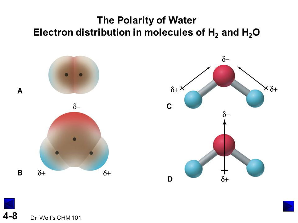 The Polarity of Water Electron distribution in molecules of H2 and H2O