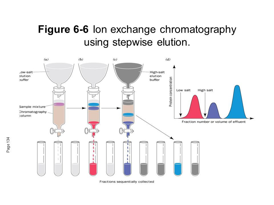 Figure 6-6 Ion exchange chromatography using stepwise elution.