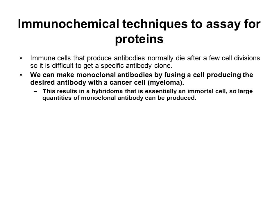 Immunochemical techniques to assay for proteins