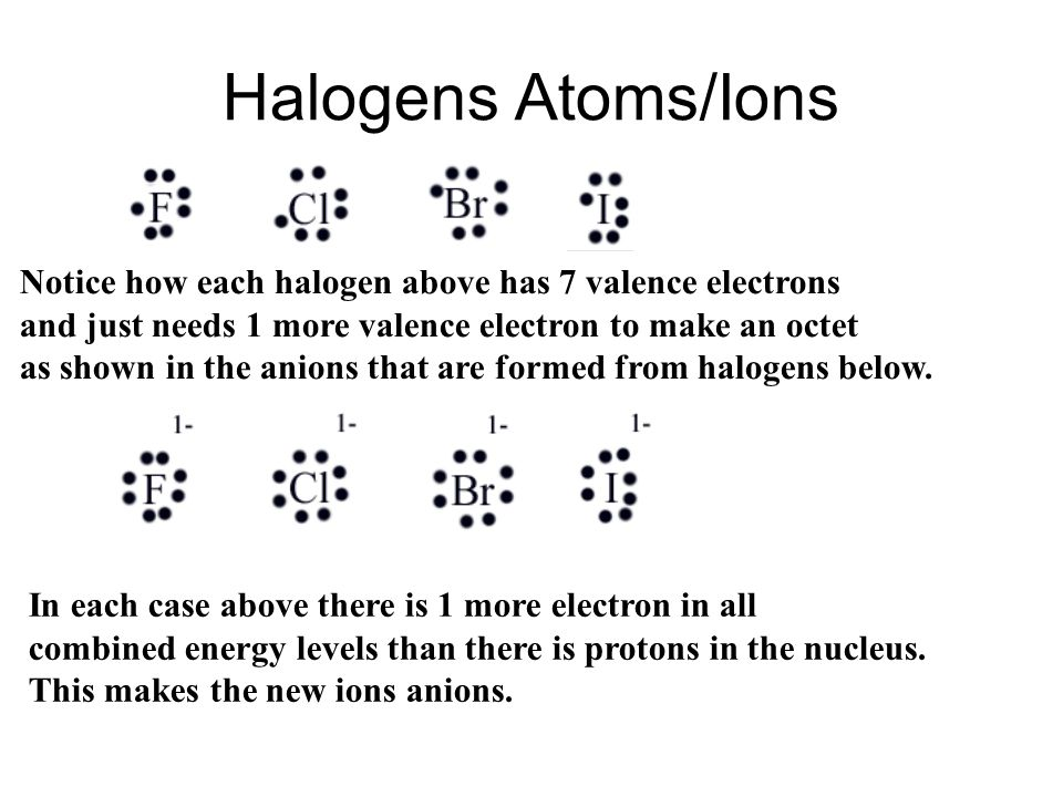 Halogens Atoms/Ions Notice how each halogen above has 7 valence electrons. and just needs 1 more valence electron to make an octet.
