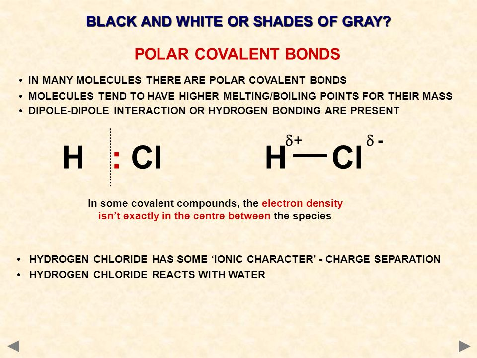 BLACK AND WHITE OR SHADES OF GRAY