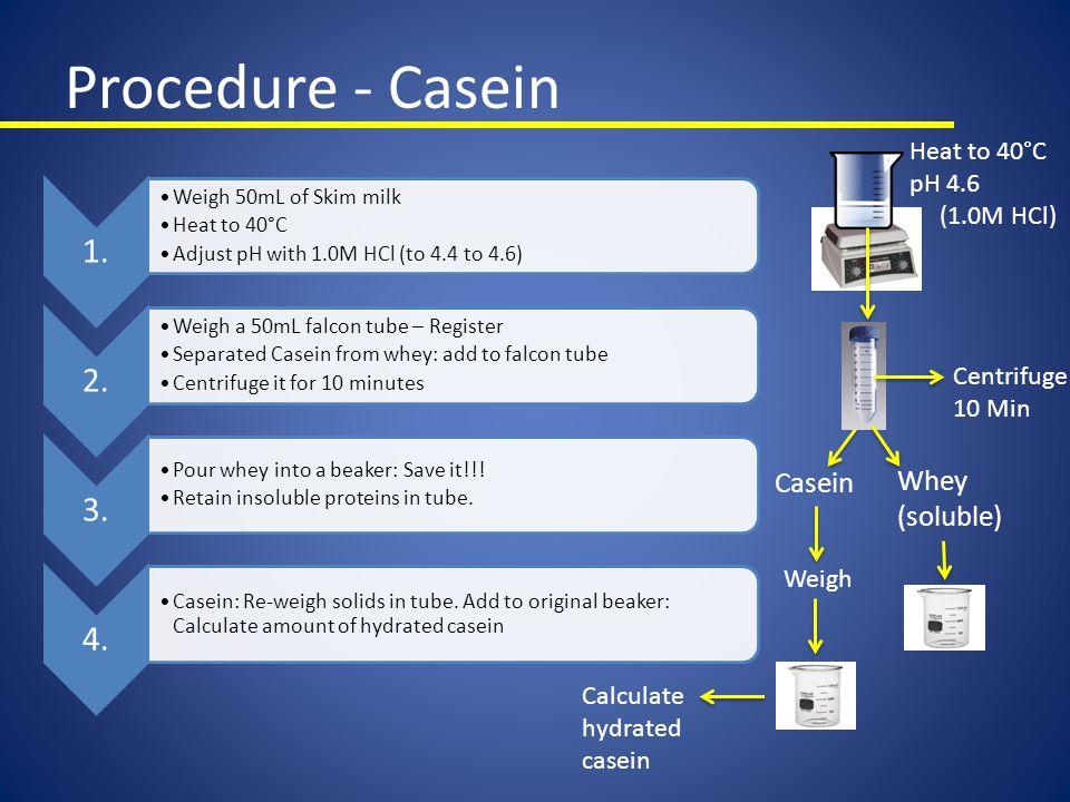 Procedure - Casein 1. 2. 3. 4. Casein Whey (soluble) Heat to 40°C