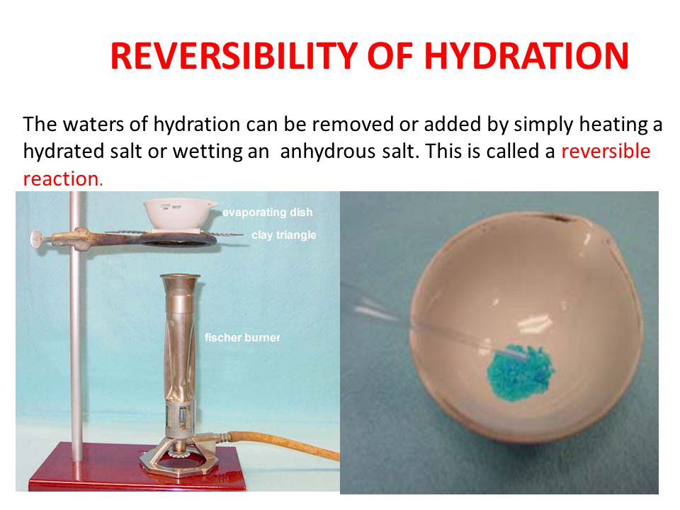 REVERSIBILITY OF HYDRATION