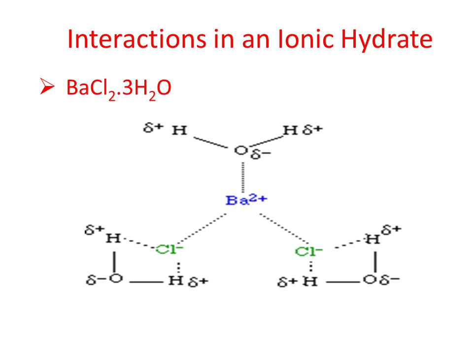 Interactions in an Ionic Hydrate