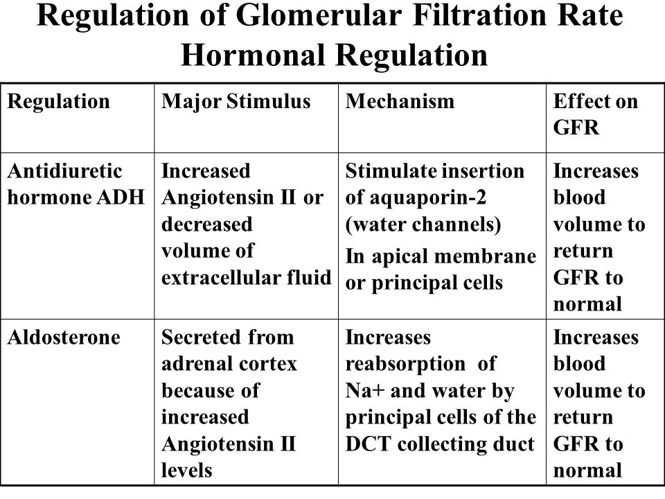Regulation of Glomerular Filtration Rate Hormonal Regulation