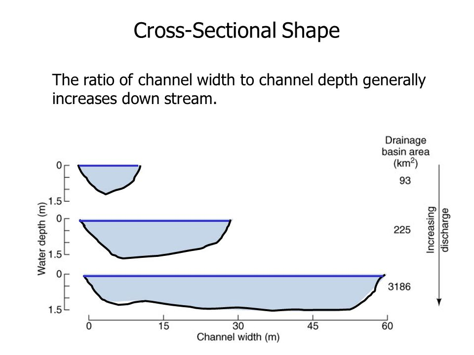 Cross-Sectional Shape