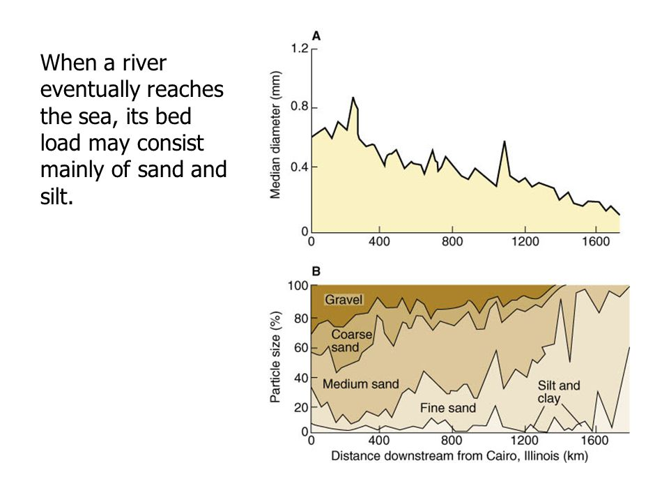 When a river eventually reaches the sea, its bed load may consist mainly of sand and silt.