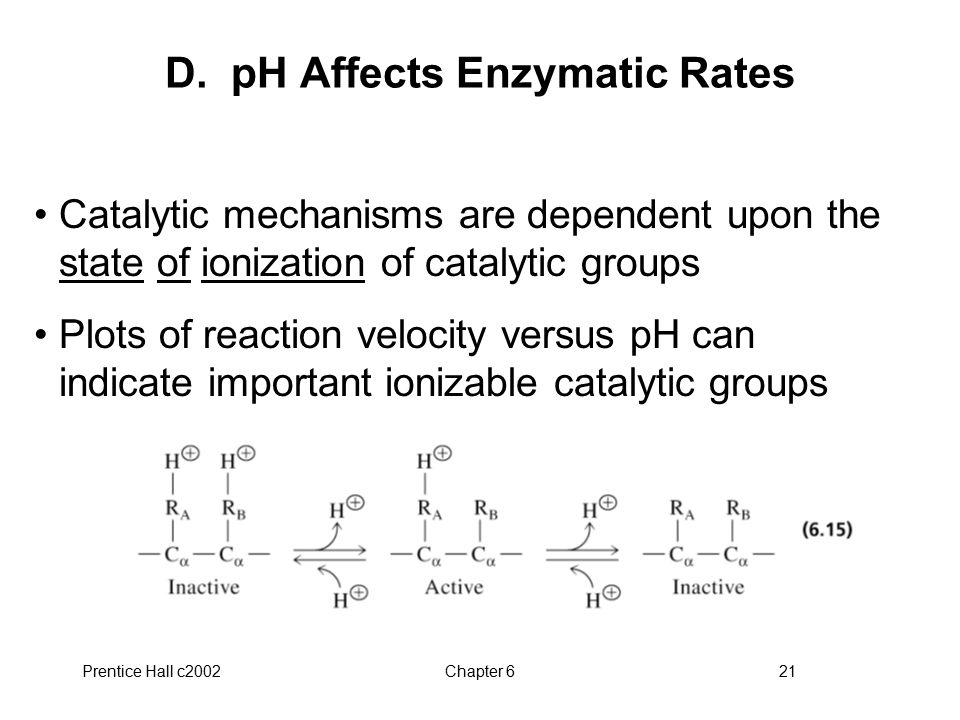 D. pH Affects Enzymatic Rates