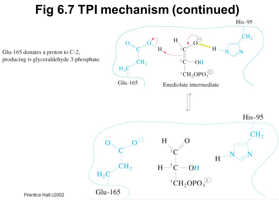 Fig 6.7 TPI mechanism (continued)
