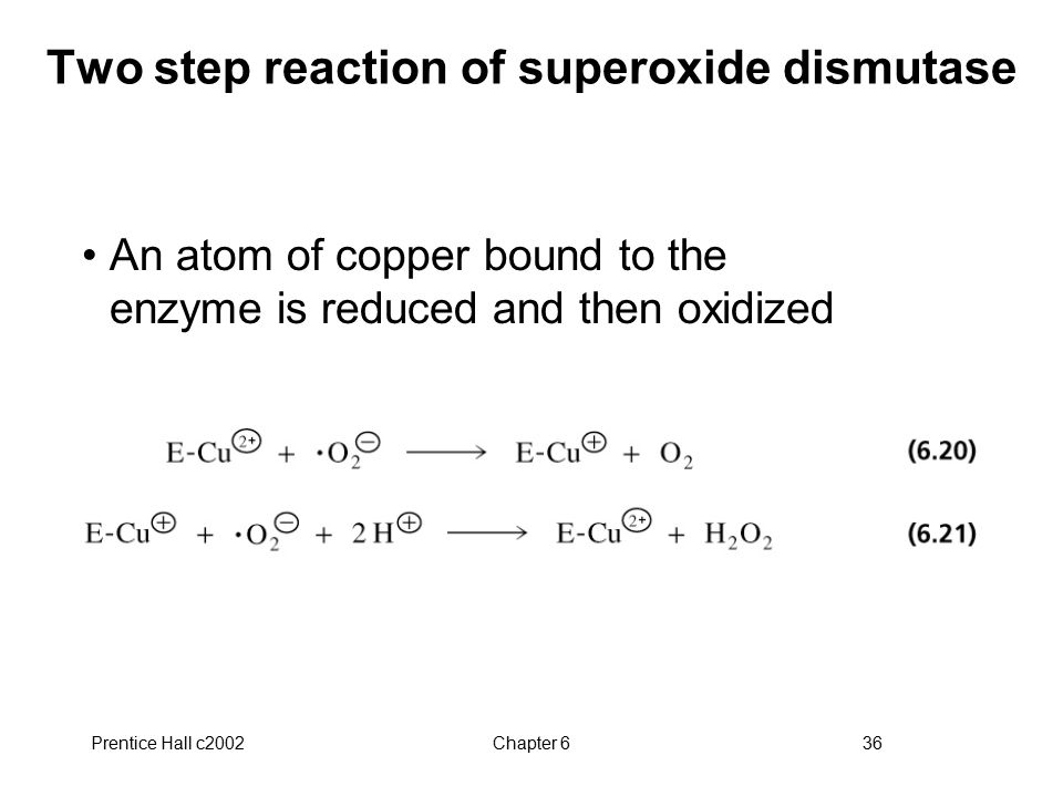 Two step reaction of superoxide dismutase