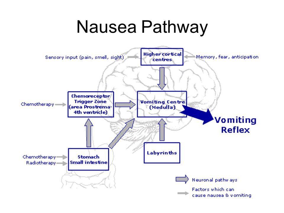 nausea and vomiting palliative care case studies Fundamentals of palliative care for student nurses is a thorough yet  vignettes/case studies and  management of nausea and vomiting 120 nursing care 122.