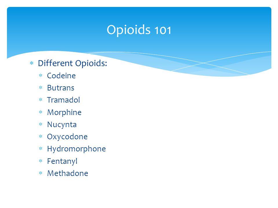 Opioids 101 Different Opioids: Codeine Butrans Tramadol Morphine