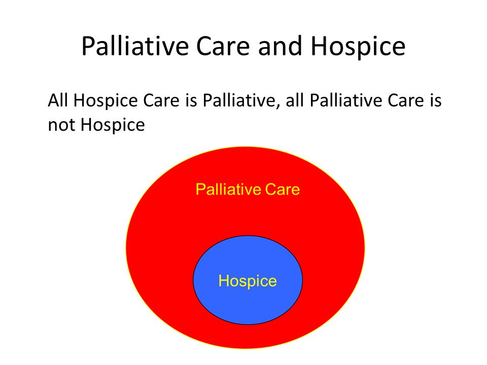 Palliative Care and Hospice