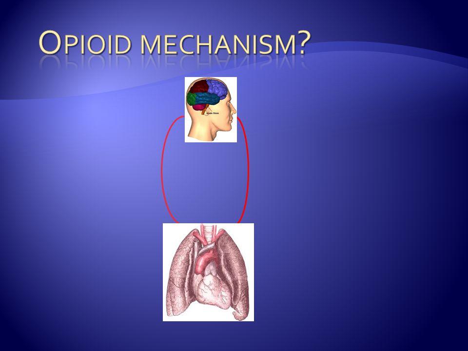 Opioid mechanism.