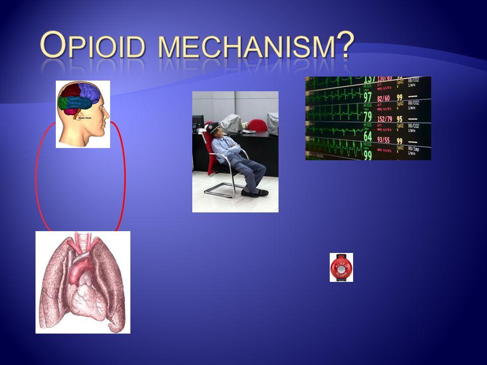 Opioid mechanism