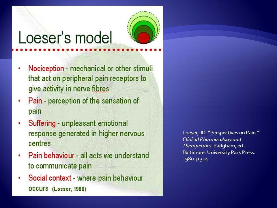 Loeser, JD. Perspectives on Pain