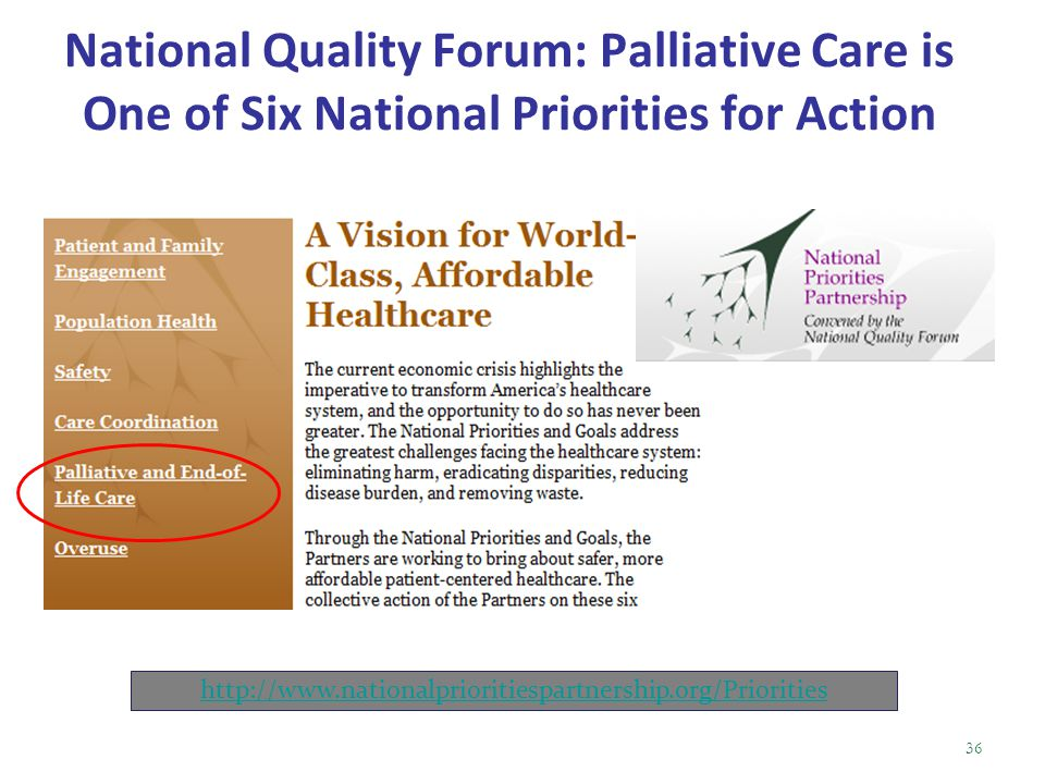 National Quality Forum: Palliative Care is One of Six National Priorities for Action